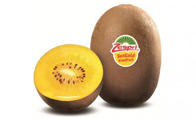 ZSG-1+05L-15cm_low-_-Zespri-SunGold-web