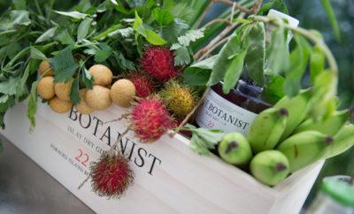 Botanist-Cover